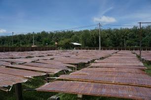 Drying mats in the sun